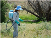 Woman Dressed in Protective Gear and Spraying Weeds